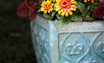 Glazed Planter Collections
